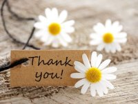 thank-you-flowers-3